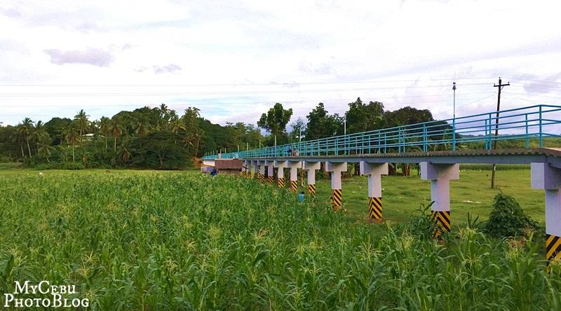 footbridge-cover